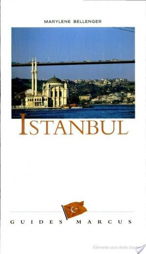 Affiche Istanbul