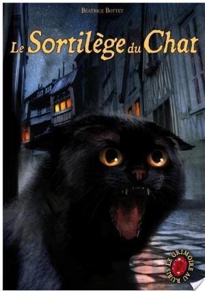 Affiche Le Grimoire au rubis tome 2 : Le Sortilège du Chat