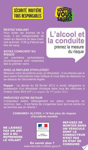 Affiche Festiv' Sarthe 2012 (avec avis des lecteurs)