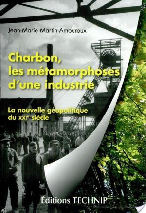 Affiche Charbon, les métamorphoses d'une industrie