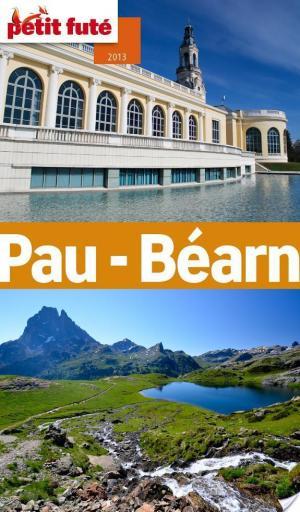 Affiche Pau-Béarn 2013 (avec cartes, photos + avis des lecteurs)