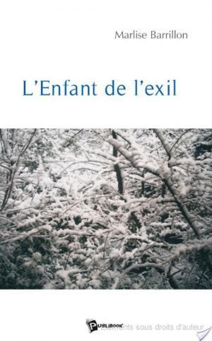 Affiche L'Enfant de l'Exil -