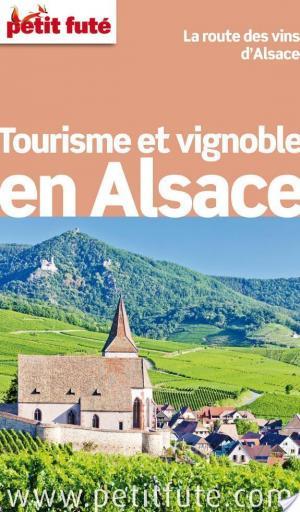Affiche Tourisme et Vignoble en Alsace 2014 Petit Futé
