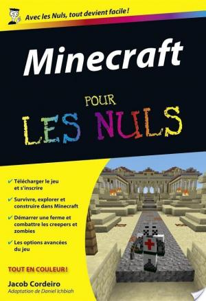 Affiche Minecraft Pour les Nuls