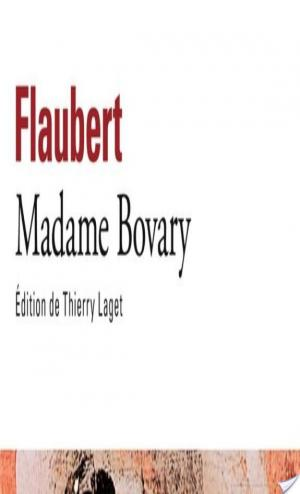 Affiche Madame Bovary (édition enrichie)