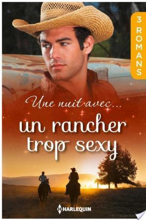 Affiche Une nuit avec... un rancher trop sexy