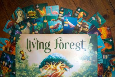 Boite Living Forest : Pourquoi est-il marquant ?