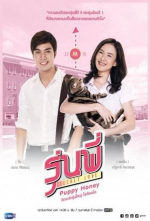 Affiche Senior Secret Love: Puppy Honey