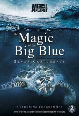 Affiche The Magic of the Big Blue