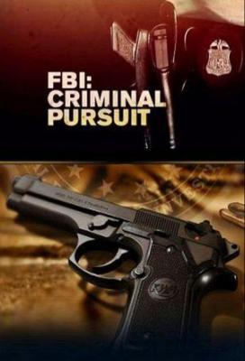 Affiche FBI: Criminal Pursuit