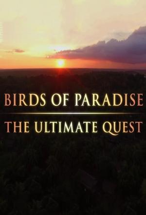 Affiche Birds of Paradise: The Ultimate Quest