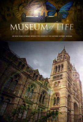 Affiche Museum of Life