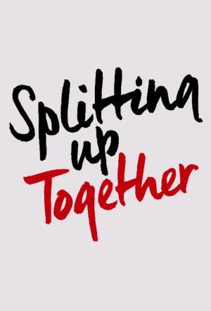 affiche Splitting Up Together (US)
