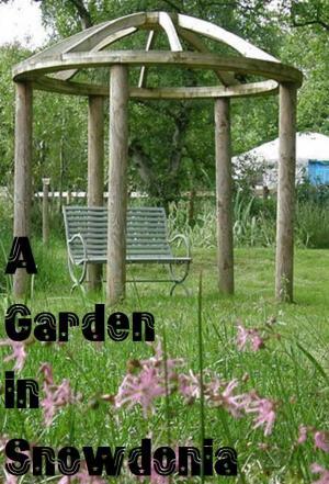 Affiche A Garden in Snowdonia