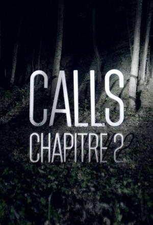 Affiche CALLS