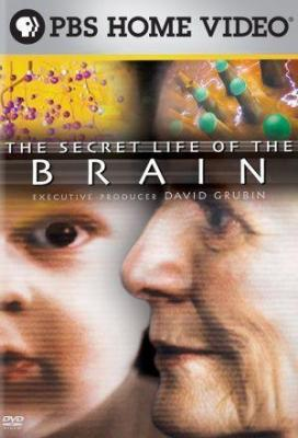 Affiche The Secret Life Of The Brain