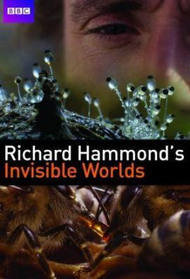 Affiche Les mondes invisibles de Richard Hammond