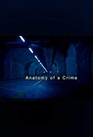 Affiche Anatomy of a crime