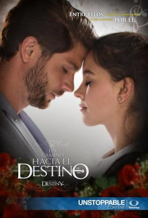 Affiche Road To Destiny