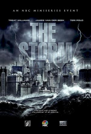 Affiche The Storm