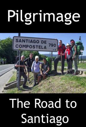 Affiche Pilgrimage: The Road to Santiago