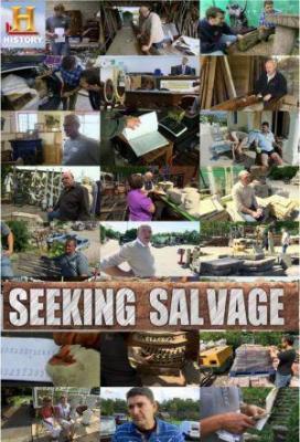 Affiche Seeking Salvage