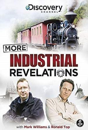 Affiche More Industrial Revelations