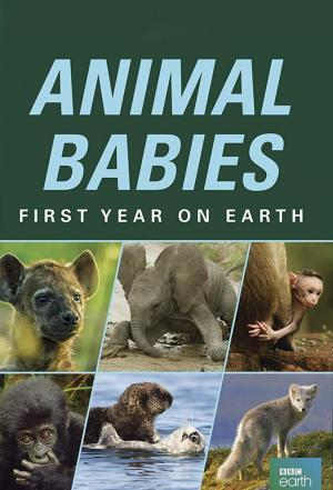 Affiche Animal Babies: First Year on Earth