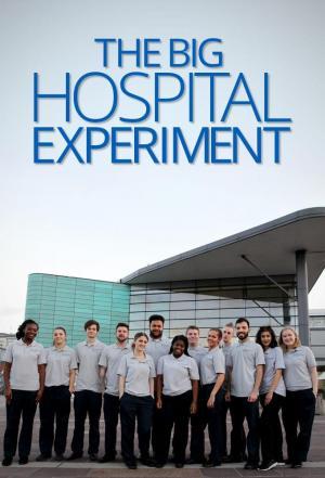 Affiche The Big Hospital Experiment