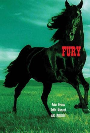 Affiche Fury