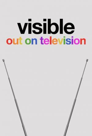 Affiche Visible: Out on Television