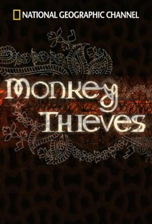 Affiche Monkey Thieves