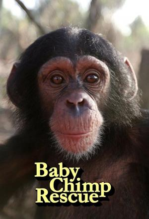Affiche Baby Chimp Rescue
