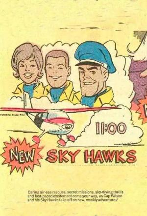 affiche Skyhawks