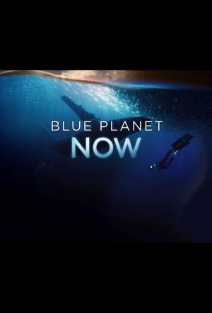 affiche Blue Planet Now