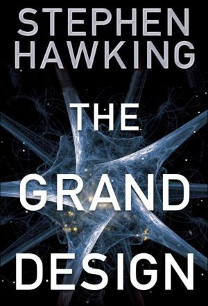 Affiche Stephen Hawking's Grand Design