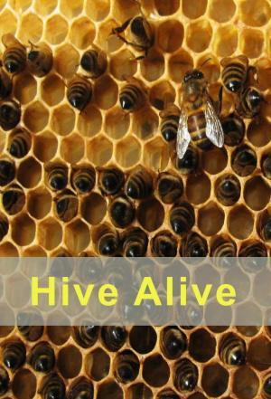 affiche Hive Alive