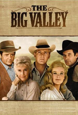 Affiche The Big Valley