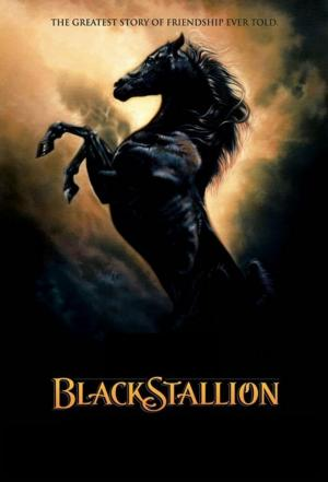Affiche The Adventures of the Black Stallion