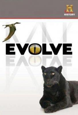 Affiche Evolve