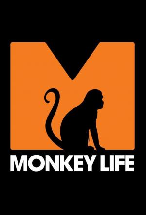 Affiche Monkey Life