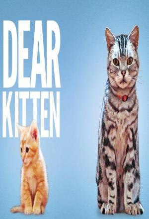 Affiche Dear Kitten