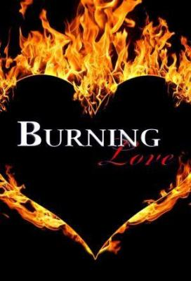 Affiche Burning Love