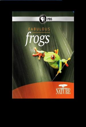 Affiche PBS Nature Fabulous Frogs