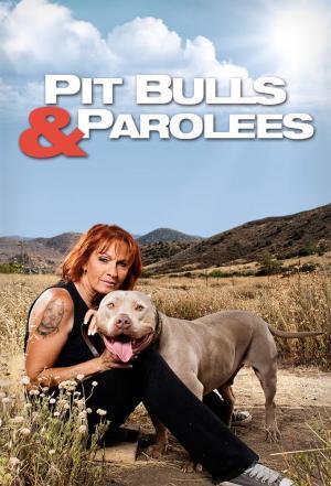 Affiche Pitbulls et prisonniers