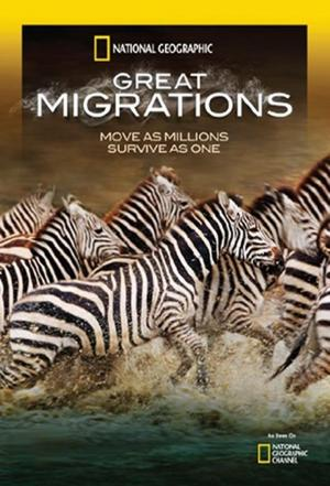 Affiche Les Grandes Migrations (Great Migrations)