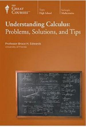 Affiche Understanding Calculus: Problems, Solutions, and Tips