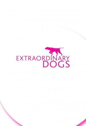 Affiche Extraordinary Dogs