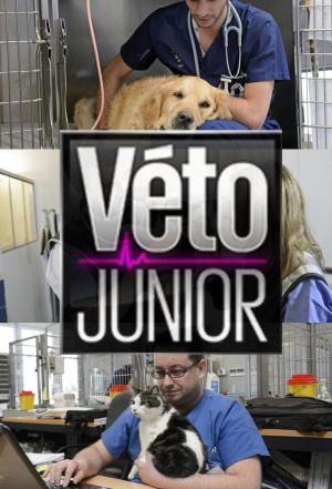 Affiche Véto junior