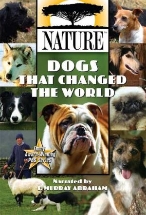 Affiche Dogs That Changed The World